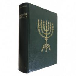 SAGRADA BIBLIA (Versión Directa de las Lenguas Originales, Hebrea y Griega, Al Castellano)
