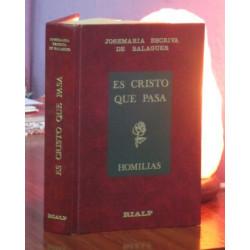 ES CRISTO QUE PASA Homilias
