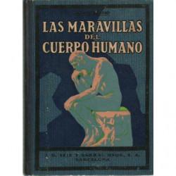 LAS MARAVILLAS DEL CUERPO HUMANO