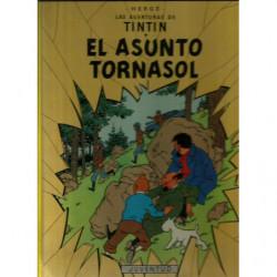 EL AUNTO TORNASOL