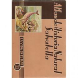 Atlas de Historia Natural Salvatella 11, LA VIDA EN EL MAR