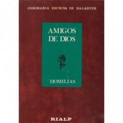AMIGOS DE DIOS. HOMILIAS
