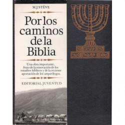 POR LOS CAMINOS DE LA BIBLIA